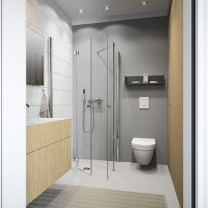 Nie lada wyzwaniem, związanym z małym metrażem, jest ulokowanie urządzeń sanitarnych w taki sposób, by nie kolidowały z innymi akcesoriami. Fot. Radaway