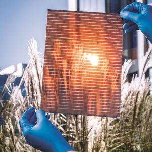 Ogniwa perowskitowe wytwarza się w temperaturze pokojowej, stosunkowo łatwo. Są elastyczne, cienkie, lekkie, częściowo transparentne, co otwiera przed nimi mnóstwo zastosowań niedostępnych w przypadku ogniw tradycyjnych. Fot. Saule Technologies