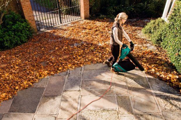 Usuwanie na bieżąco liści z ogrodu, szczególnie przed zimą jest niezwykle istotne. Liście są podatne na procesy gnilne i zakwaszają ziemię, co jest szkodliwe dla roślin i kwiatów. Natomiast jeśli zostawimy je np. na naszym tarasie - w zimie, p