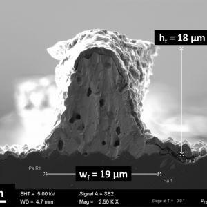 Wykonanie ścieżki metalizacyjnej poprzecznej poprzez nałożenie warstwy zarodkowej (seed layer) oraz osadzenie na niej warstwy srebra o rekordowo małych rozmiarach 19x18 mikronów pozwoli zaoszczędzić do 30 % srebra w masowej produkcji ogniw fotowoltaicznych. Fot. Fraunhofer ISE
