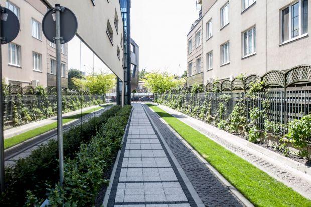 Ogrody wertykalne i zielone dachy lekiem na ekologiczne problemy