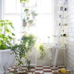 Półki z drabiny to doskonały mebel do łazienki. Dają wiele miejsca do przechowywania, ale z racji tego, że są to otwarte półki, wymagają ciągłego porządku. Fot. IKEA
