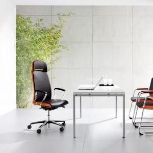 Bok oparcia i zagłówka fotelu Belive może być tapicerowany (możliwość łączenia kolorów). Believe został wyposażony w pneumatyczny mechanizm podparcia lędźwi – system poduszek powietrznych i mechanizm synchroniczny adaptujący do wagi i wzrostu. Fot. BN Office Solution
