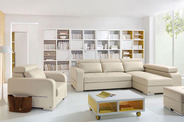 Sofa w salonie. Najpiękniejsze modele tapicerowane skórą