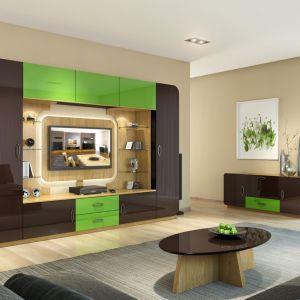 System modułowy Oki pozwoli stworzyć funkcjonalną i nowoczesną ściankę telewizyjną w salonie. Fot. Mebin