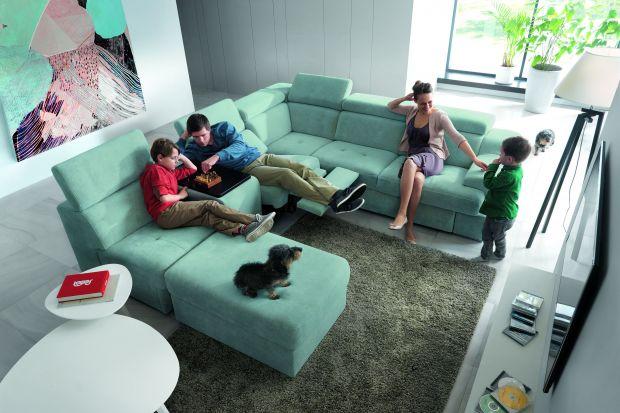 Sofa w salonie – duży mebel dla całej rodziny