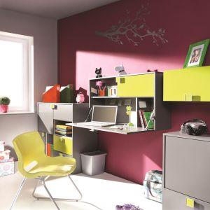Sekretarzyk z kolekcji Enyo to doskonała alternatywa dla tradycyjnego biurka. Zamykany blat pozwala utrzymać na biurku porządek. Fot. Wajnert Meble