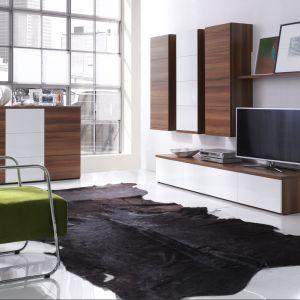 Meble do salony Jersey marki Wajnert Meble to nowoczesne moduły, dzięki którym stworzysz idealnie pasujący do Ciebie salon. Fot. Wajnert Meble
