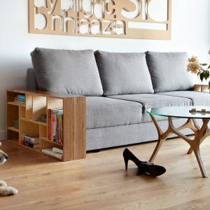 Mebel o nazwie Sofa to doskonała propozycja dla lubiących czytać na kanapie. Ma praktyczne półki, które przechowają książki. Fot. Tabanda