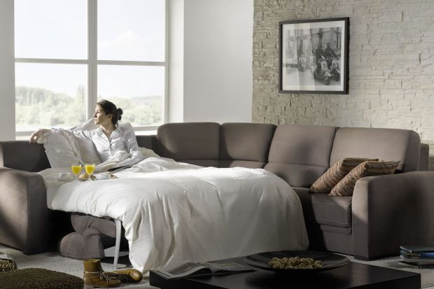 Zapewnienie sobie wygodnego miejsca do spania, to absolutna podstawa. W końcu ponad połowę życia spędzamy we śnie. Jeśli nie możemy pozwolić sobie na duże łóżko sypialniane, warto wybrać komfortową, rozkładaną sofę. Podpowiadamy jaką...