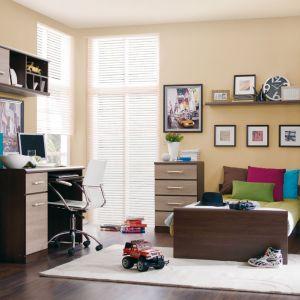 Meble Indi. W ramach kolekcji dostępna jest szafa i komoda, łóżko, regał, biurko oraz półka. Fot. Black Red White