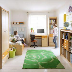 Kolekcja Apli pozwala na tworzenie wielu aranżacji pokoju dopasowanych do indywidualnych potrzeb nastolatka. Łóżko wyposażone jest w praktyczny schowek na pościel. Fot. Forte