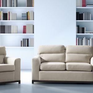 Sofa 2-osobowa Cetros. Posiada funkcję spania z opcją rozkładania typu wózek. Cena: około 1.800 zł. Fot. Libro