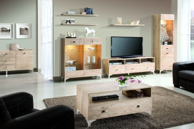 Naturalne drewno, szklane powierzchnie czy zmysłowe oświetlenie? Co decyduje o tym, że salon jest urządzony elegancko? Zobaczcie najciekawsze kolekcje do salonu...