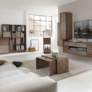 Salon urządzony meblami z kolekcji Bo, będzie nie tylko nowoczesny, ale również z charakterem. Kolekcja wykonana jest z litego amerykańskiego drewna orzechowego, zaś poszczególne fronty wykonano na bazie szkła satynowanego. Fot. Kler