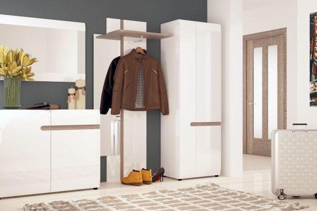 Może być solidna, trzydrzwiowa albo zupełnie niewielka, służąca do podręcznego przechowywania płaszczy i kurtek. Szafa w przedpokoju to mebel, który pozwala na utrzymanie porządku w tym, zazwyczaj trudnym do urządzenia, pomieszczeniu.