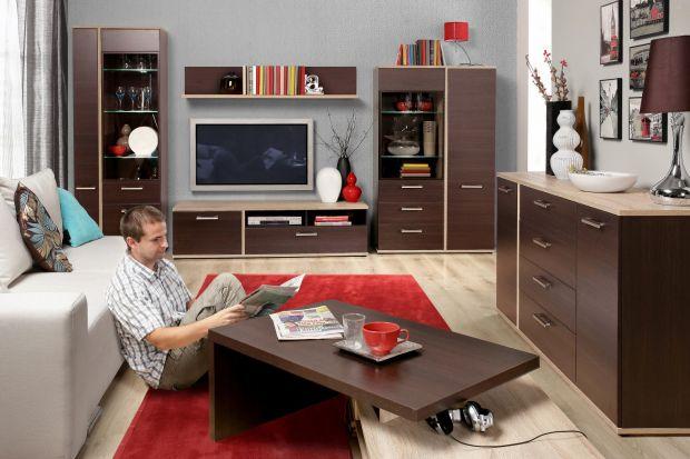 Praktyczne i funkcjonalne meble do salonu w ciepłym odcieniu brązów.