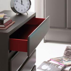 Szuflady nie muszą być proste i monotonne. Zastosowanie kolorowego wnętrza ożywi nie tylko sam mebel, ale i pomieszczenie. Na zdjęciu komoda z kolekcji Possi. Fot. Black Red White