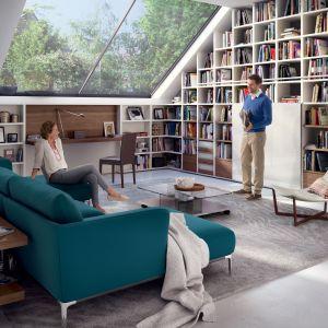 Duży regał na książki, a w pobliżu kanapa i wygodny fotel. Fot. Huelsta