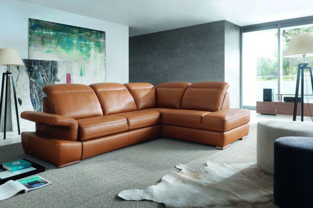 Sofa w salonie. Najciekawsze propozycje w brązach i beżach