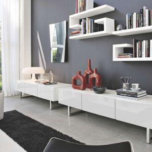 Geometryczne półki są modne i stanowią doskonałe wyposażenie salonu wtedy, kiedy chcemy czymś zaskoczyć - niebanalnym i designerskim. Na zdjęciu kolekcja Seattle. Fot. Kler