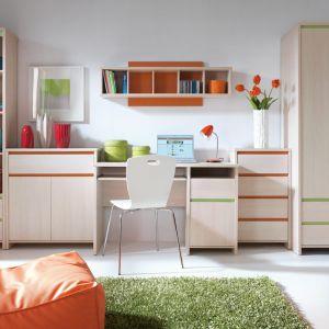 W pokoju dziewczynki nie może zabraknąć żywych kolorów. Świetnie sprawdzą się meble z kolorowymi wstawkami i aplikacjami. Na zdjęciu kolekcja Numlock. Fot. Black Red White