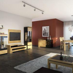 Kolekcja mebli do salonu Emporis w kolorze dębu naturalnego i czerni. Fot. MDesign