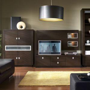 W kolekcji Monte Carlo zastosowano różne materiały - drewno, szkło i aluminium. Elegancji meblom dodaje egzotyczna barwa drewna wenge. Fot. Bydgoskie Meble
