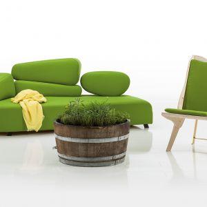 Modne są wyraziste odcienie zieleni. Fot. Bruhl
