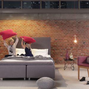 Tapicerowane łóżko Duke Soft w kolorze szarym. Fot. Swarzędz Home