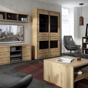 Kolekcja Shetland stworzy przytulny klimat w salonie, duża ilość zamkniętych i otwartych półek zapewni wygodę przechowywania. Fot. Meble Wójcik