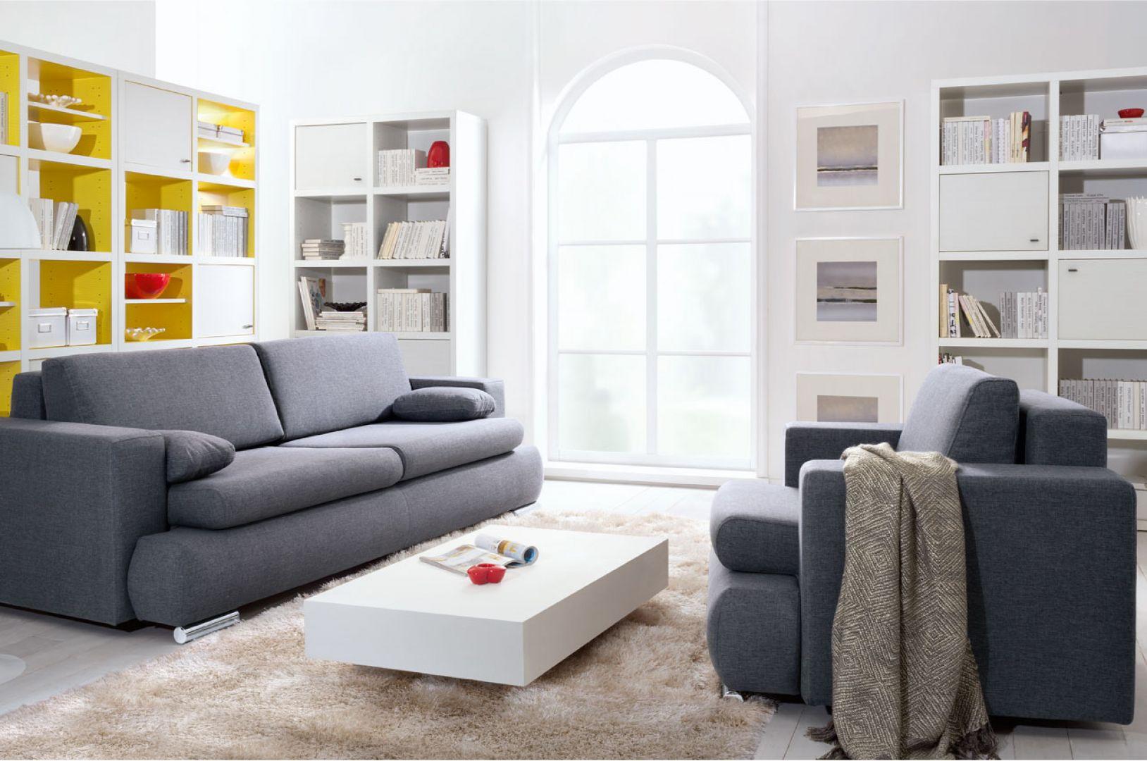 Sofa Enzo, w modnej szarej kolorystyce. Ma obłe kształty, przez co prezentuje się bardzo przytulnie. Fot. Black Red White