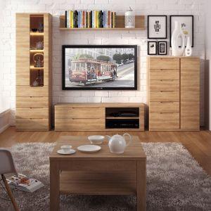 Kolekcja mebli do salonu Contra wyróżnia się rysunkiem drewna o ciepłym odcieniu. Fot. Meble Wójcik