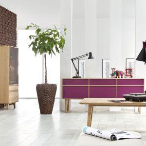 Meble z kolekcji Lovell dostępne są w modnych kolorach. Telewizor można ustawić na niskiej szafeczce osadzonej na skośnych, drewnianych nóżkach. To kolekcja, która sprawdzi się w salonie stylizowanym na skandynawski. Fot. Meble Matkowski