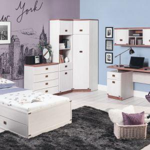 Eleganckie meble z serii Magic. Łóżko wyposażone jest w szufladę na pościel, co znacznie ułatwia jej przechowywanie. Fot. Bog Fran