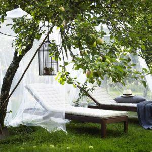 Leżaki ogrodowe to idealnie miejsce do wypoczynku. W sezonie warto wyposażyć się również w moskitierę, która zabezpieczy przed ukąszeniami owadów. Fot. IKEA