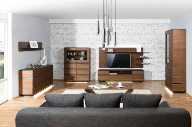 Meble w kolorze ciemnego drewna posiadają wiele zalet wizualnych. Sprawią, że nasz salon zyska uniwersalny i harmonijny wygląd.