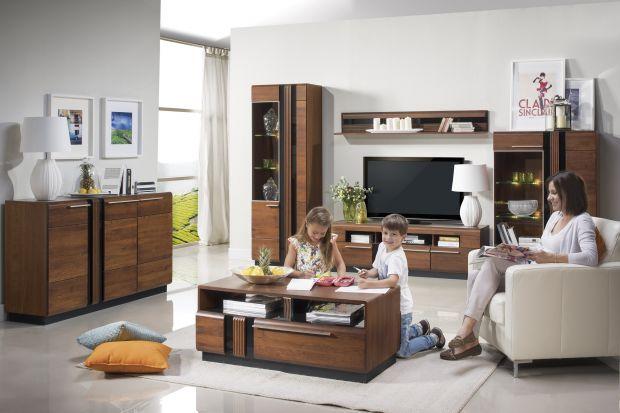 Meble z rysunkiem drewna cieszą się dużą popularnością. Potrafią każdy nowoczesny salon uczynić pięknym i przytulnym wnętrzem.