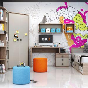 Zestaw mebli młodzieżowych Moya oferuje wiele wariantów aranżacyjnych, które można wykorzystać zarówno do urządzenia pokoju jednego dziecka jak i rodzeństwa. Fot. Salony Agata
