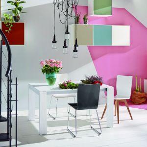 Kolorowa kolekcja Now Easy. Fot. Huelsta