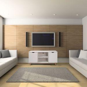 Telewizor na ścianie doskonale komponuje się z wiszącymi obok głośnikami. Fot. Homekraft