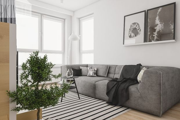 Sofa w salonie. Modele bez funkcji spania