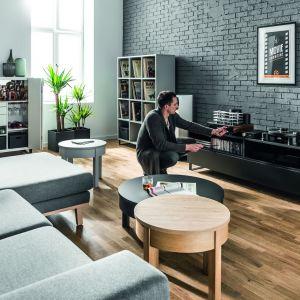Kolekcja Simple łączy jasną i ciemną kolorostykę w salonie. Fot. Vox