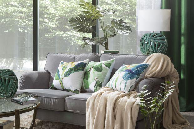 Meble do domu kupujemy na wiele lat. Co zrobić, jeśli wysłużona sofa nie zachwyca nas swoim wyglądem tak, jak kiedyś? Można to łatwo zmienić, bez konieczności kupowania nowych mebli.