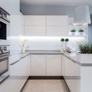 Wysoka zabudowa kuchenna również doskonale wygląda w bieli. Fot. Vigo/Max Kuchnie