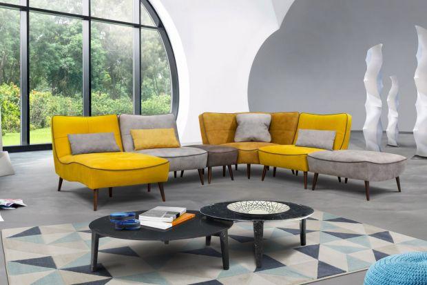 Sofa w kilku kolorach - barwny element w kąciku wypoczynkowym