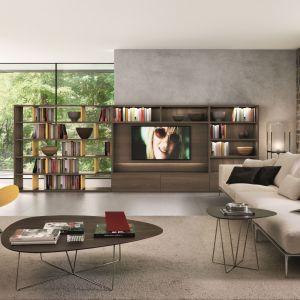 Stoliki kawowe włoskiej marki Desiree – blaty o nieregularnych kształtach wsparte na metalowych płozach. Fot. Desiree
