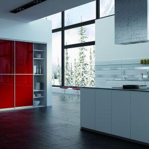 Zastosowanie drzwi przesuwnych w kuchni. Fot. Sevroll-System