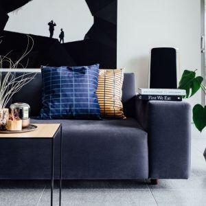 Poduszki mogą być ciekawymi akcentami dekoracyjnymi  we wnętrzu. Fot. Davix