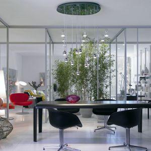 Dzięki szklanym drzwiom i ściankom osoby żyjące na dużym metrażu mogą dodatkowo jeszcze wydobyć przestronność wnętrza. Fot. Raumplus